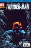 Der spektakuläre Spider-Man (2004) 16