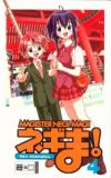 Magister Negi Magi 04