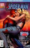 Der spektakuläre Spider-Man (2004) 21