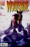 Wolverine (2004) 45