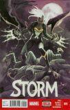 Storm (2014) 05