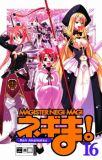Magister Negi Magi 16