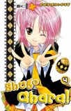 Shugo Chara! 04