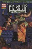 Punisher War Journal (2007) 03: Jäger und Gejagter [World War Hulk]