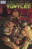 Teenage Mutant Ninja Turtles (2011) 53 [Incentive Cover]