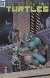 Teenage Mutant Ninja Turtles (2011) 54 [Incentive Cover]