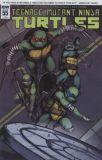 Teenage Mutant Ninja Turtles (2011) 55 [Incentive Cover]