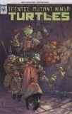 Teenage Mutant Ninja Turtles (2011) 56 [Incentive Cover]