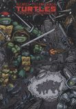 Teenage Mutant Ninja Turtles (1984) The Ultimate Collection HC 02
