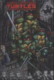 Teenage Mutant Ninja Turtles (1984) The Ultimate Collection HC 03