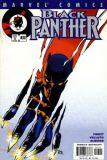 Black Panther (1998) 33