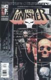 The Punisher (2001) 28