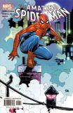 Amazing Spider-Man (1999) 48