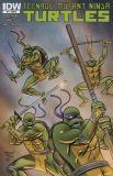 Teenage Mutant Ninja Turtles (2011) 21 [Incentive Cover]