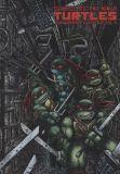 Teenage Mutant Ninja Turtles (1984) The Ultimate Collection HC 04