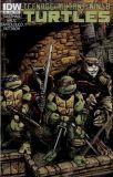 Teenage Mutant Ninja Turtles (2011) 24