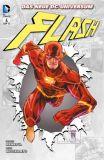 Flash (2012) 04: Wie alles begann