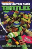 Teenage Mutant Ninja Turtles TV-Comic 01: Aufstieg der Turtles