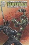 Teenage Mutant Ninja Turtles New Animated Adventures (2013) 04