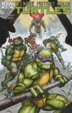 Teenage Mutant Ninja Turtles (2011) 24 [Incentive Cover]