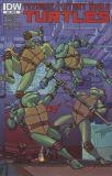 Teenage Mutant Ninja Turtles (2011) 34 [Incentive Cover]