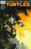 Teenage Mutant Ninja Turtles (2011) 45 [Incentive Cover]