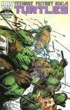 Teenage Mutant Ninja Turtles (2011) 46 [Incentive Cover]