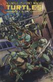 Teenage Mutant Ninja Turtles Heroes Collection HC