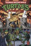 Teenage Mutant Ninja Turtles Adventures (1989) TPB 08