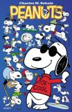 Peanuts 04: Joe Cool