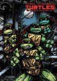 Teenage Mutant Ninja Turtles (1984) The Ultimate Collection HC 06