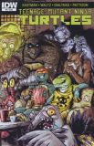 Teenage Mutant Ninja Turtles (2011) 53