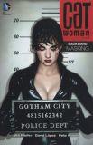 Catwoman (2002) TPB 05: Backward Masking