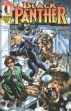 Black Panther (1998) 06
