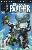 Black Panther (1998) 34
