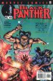 Black Panther (1998) 42