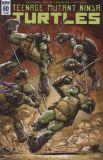 Teenage Mutant Ninja Turtles (2011) 60