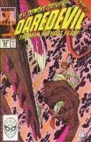 Daredevil (1964) 263
