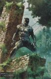 Black Panther (2016) 170 (Young Guns Variant Cover)
