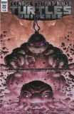 Teenage Mutant Ninja Turtles Universe (2016) 22