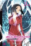 Accel World Novel 14 - Der leuchtende Erzengel (Roman)