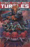 Teenage Mutant Ninja Turtles (2011) TPB 21: Battle Lines