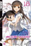 Accel World Novel 18 - Der schwarze Kämpfer mit den zwei Schwertern (Roman)