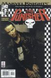 The Punisher (2001) 12