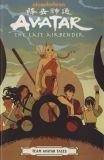 Avatar the Last Airbender (19): Team Avatar Tales