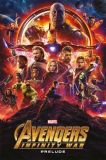Marvel Movie Collection (2019) 10: Avengers - Infinity War