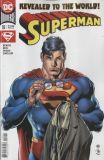 Superman (2018) 18