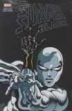 Silver Surfer: Black (2019) Treasury Edition SC