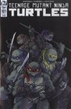 Teenage Mutant Ninja Turtles (2011) 101