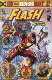 The Flash Giant (2019) 03